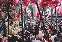 http://www.nihon.ru/img/Festivals/kenka_matsuri.jpg