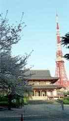 http://www.nihon.ru/img/tokyo/zojoji_tokyo_tower.jpg